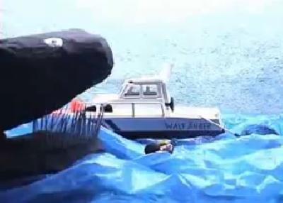 Gastbeitrag: Die Walfänger