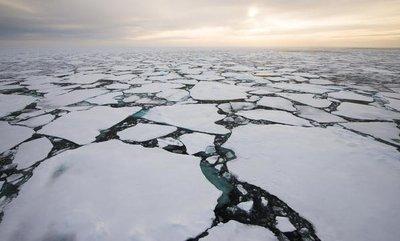 Schützt die Arktis!