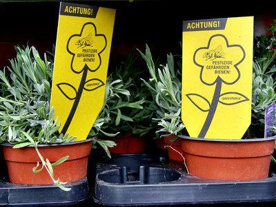 Achtung: Giftcocktails im Blumenbeet!