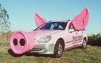 Auto Schweinchen