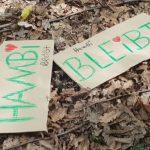 Greenpeace Hannover für Erhalt des Hambacher Waldes